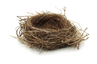 When an Empty Nest is Looming