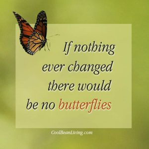 If nothing ever changed, there would be no butterflies.