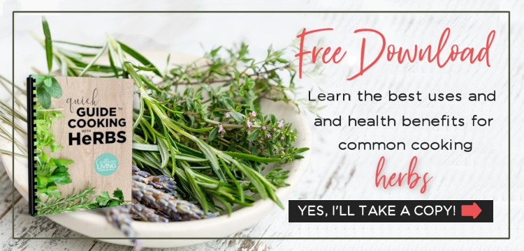 Free Download of Quick Guide to Cooking with Herbs