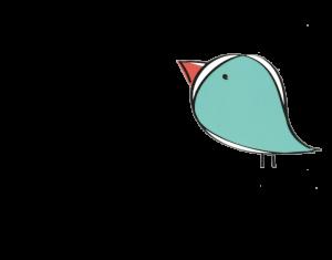 Bird Oops 404